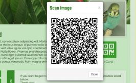 QR-Code image in a modal window